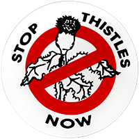 Stop Thistles Now
